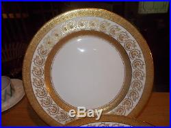 12 ADDERLEY 10 Elegant Dinner Plates Gold Encrusted Rim & Verge, Gold Flowers
