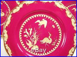 12 Spode Copeland England Hand Painted Birds Peacocks Gold Dinner Plates Set