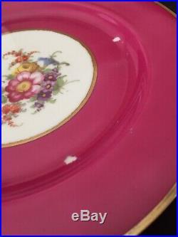 14 Tirschenreuth PT Bavaria Dinner Plates Magenta Gold Floral