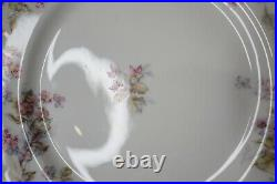 Antique Haviland Limoges Double Gold Rim Flower Dinner Plate 9 3/4 Dia Set of 4
