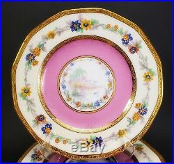Haviland Limoges France 11 Octagonal Scenic Lake Pink Gold Dinner PlatesRARE